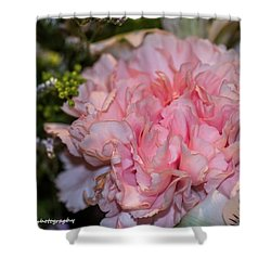 Pale Pink Carnation Shower Curtain
