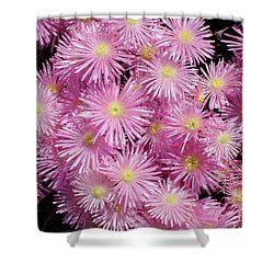 Pale Pink Flowers Shower Curtain