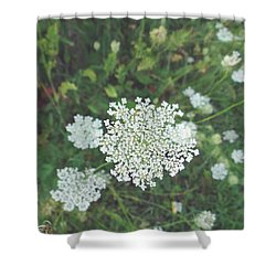 Pale Queen Shower Curtain