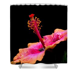 Paleaku Hibiscus Shower Curtain