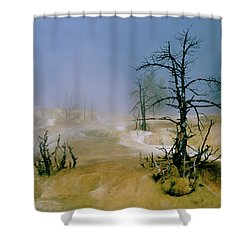 Palette Spring Shower Curtain by Ed  Riche