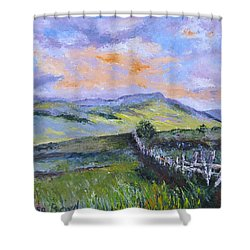 Pallet Knife Sunset Shower Curtain