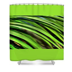 Shower Curtain featuring the photograph Palm Abstract By Kaye Menner by Kaye Menner