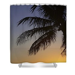 Palm At Sunset Shower Curtain by Brandon Tabiolo - Printscapes