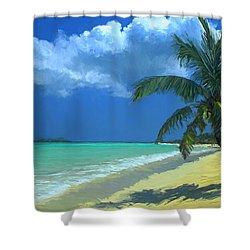 Palm Beach In The Keys Shower Curtain