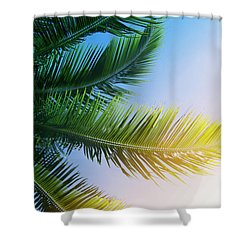 Shower Curtain featuring the photograph Palm Branches by Jocelyn Friis