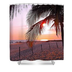 Palm Collection - Sunset Shower Curtain