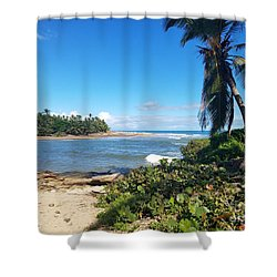 Palm Cove Shower Curtain