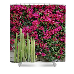 Palm Desert Blooms Shower Curtain