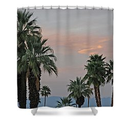 Palm Desert Sunset  Shower Curtain