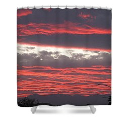 Shower Curtain featuring the photograph Palm Desert Sunset by Phyllis Kaltenbach