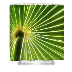 Palm Glow Shower Curtain