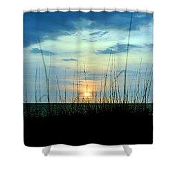 Palm Island Shower Curtain