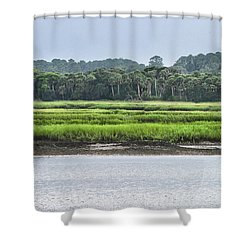Shower Curtain featuring the photograph Palm Island by Margaret Palmer
