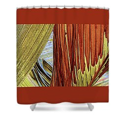Shower Curtain featuring the photograph Palm Leaf Abstract by Ben and Raisa Gertsberg