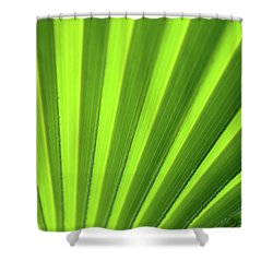 Palm Leaf Abstract Shower Curtain