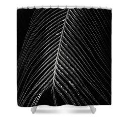 Shower Curtain featuring the photograph Palm Leaf by Deborah Benoit