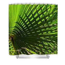 Shower Curtain featuring the photograph Palm Pattern No.1 by Mark Myhaver