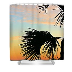 Shower Curtain featuring the photograph Palm Silhouette by Kristin Elmquist