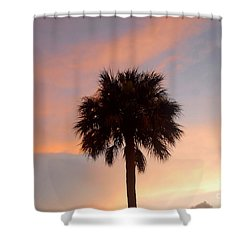Palm Sky Shower Curtain by David Lee Thompson