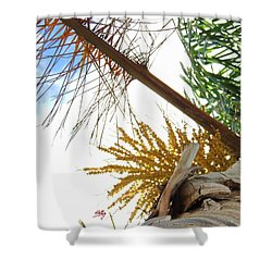 Palm Sky View Shower Curtain