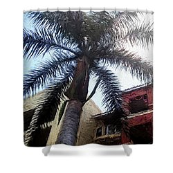 Palm Tree Art Shower Curtain