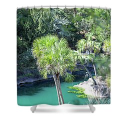 Shower Curtain featuring the photograph Palm Tree Blue Pond by Raphael Lopez