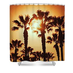 Palm Tree Dreams Shower Curtain
