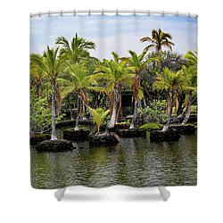 Shower Curtain featuring the photograph Palm Tree Islands by Pamela Walton