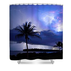 Palm Tree Nights Shower Curtain
