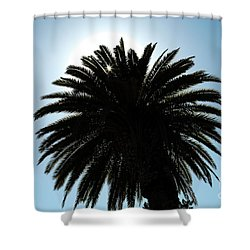 Palm Tree Silhouette Shower Curtain