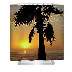 Palm Tree Sunset Shower Curtain