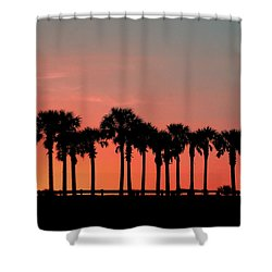 Shower Curtain featuring the photograph Palm Tree Sunset by Joel Witmeyer