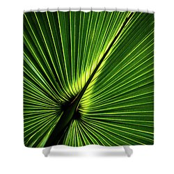 Palm Tree With Back-light Shower Curtain