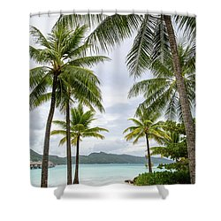 Shower Curtain featuring the photograph Palm Trees 1 by Sharon Jones