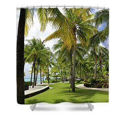 Shower Curtain featuring the photograph Palm Trees 2 by Sharon Jones