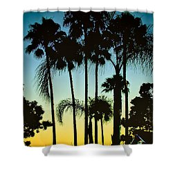 Shower Curtain featuring the photograph Palm Trees At Marina by Joseph Hollingsworth