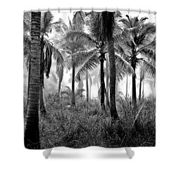 Palm Trees - Black And White Shower Curtain
