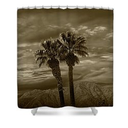 Shower Curtain featuring the photograph Palm Trees By Borrego Springs In Sepia Tone by Randall Nyhof