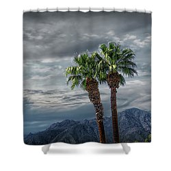 Shower Curtain featuring the photograph Palm Trees By Borrego Springs In The Anza-borrego Desert State Park by Randall Nyhof