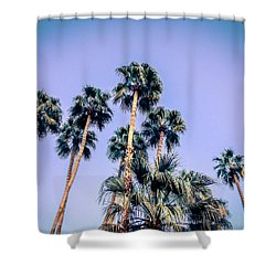 Palm Trees Palm Springs Summer Shower Curtain