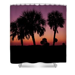 Shower Curtain featuring the photograph Palm Trees Silhouette by Joel Witmeyer