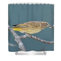Palm Warbler Lunch Shower Curtain