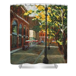 Palmer Street Shower Curtain