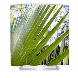 Shower Curtain featuring the painting Palmetto 1 by Renate Nadi Wesley