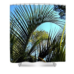 Shower Curtain featuring the painting Palmetto 2 by Renate Nadi Wesley