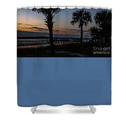 Palmetto Sky Shower Curtain