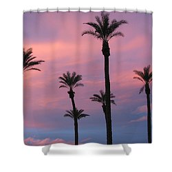 Shower Curtain featuring the photograph Palms At Sunset by Phyllis Kaltenbach