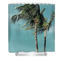 Palms In The Wind Shower Curtain