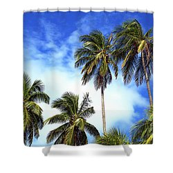 Palms Shower Curtain by John Rizzuto